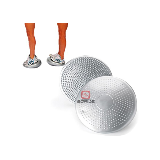 STABILITY DISC